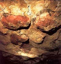 Franco-Cantabrian civilization. Cave paintigs from the cave of Altamira. Santillana del Mar (Cantabria, Spain)