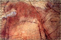 Franco-Cantabrian civilization. Cave paintings of Altamira in Santillana del Mar (Cantabria, Spain)